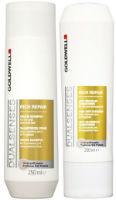 Goldwell rich repair shampoo and conditioner
